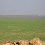 Maastoa, jossa punajalkapyyt asustivat